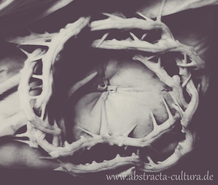 DSC_1777www.abstracta-cultura.de_