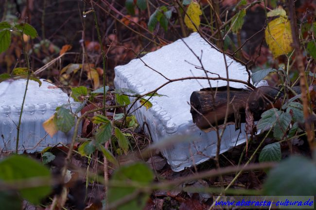 Müllhalde BO 9 abstracta