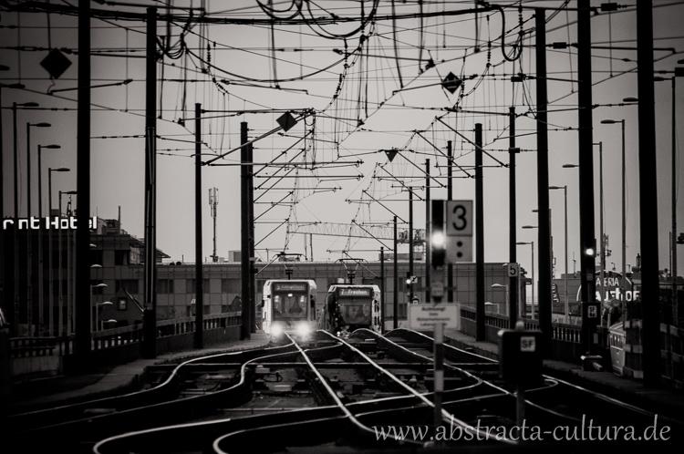 DSC_0282www.abstracta-cultura.de_